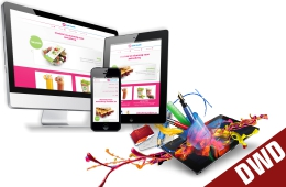 Certificate in Web Designing